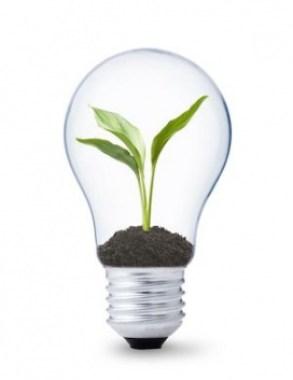 Innovation1-272x353-1