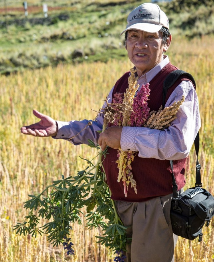 Dr. Alipio Canahua is a quinoa scientist, an activist, and a farmer, as well as a friend of Pachakuti Foods. Alexander Wankel / Pachakuti Foods.