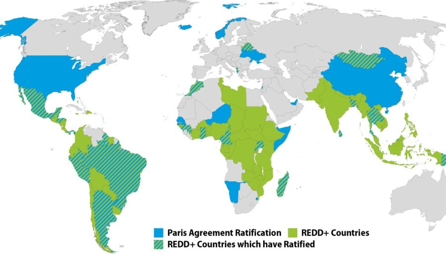 At least 19 of the 60 countries to ratify the Paris Agreement are also engaged in REDD+ efforts. Source: UNTC.