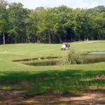 Golf course 2013