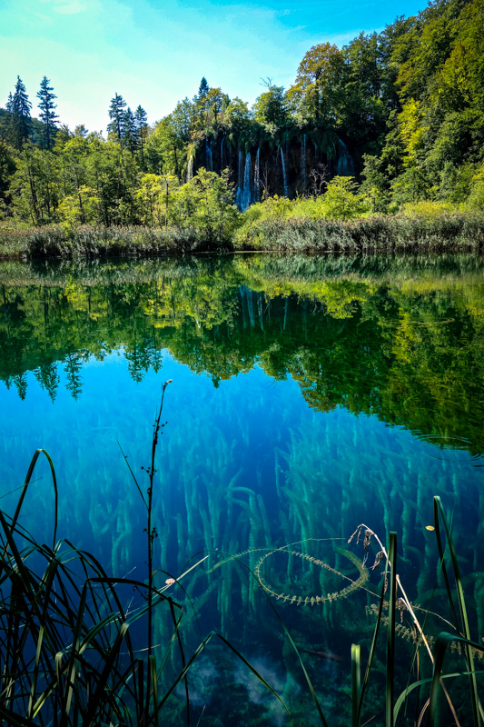 Plitivice Ready-4 copy