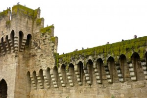 The outer wall of Avignon is mostly intact and houses thousands of pigeons