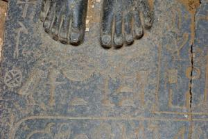 Ancient toes