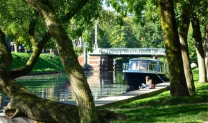 Reading along the canal