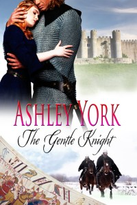 Ashley York_TheGentleKnight