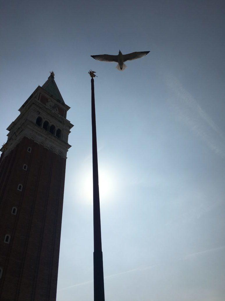 Weekend a Venezia con i bambini salire sul campanile di san marco