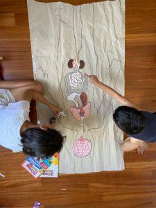 Il corpo umano formato naturale per bambini