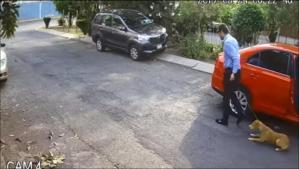 Un sujeto  abandona a su perrita en una calle de Ecatepec (VIDEO)
