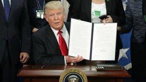 Hoy entró en vigor el Veto migratorio de Trump