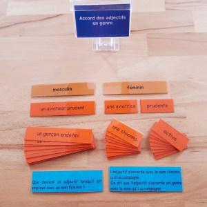 Accord de l'adjectif avec le nom ; étiquettes de manipulation Montessori ; grammaire Montessori