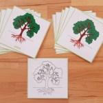 Nomenclatures botanique Montessori 3-6 ans