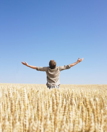 Man top of the world in wheat field