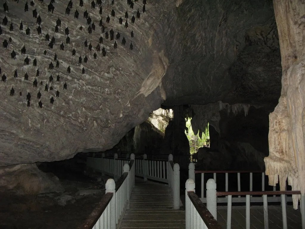 Langkawi Geopark Mangrove Tour Cave
