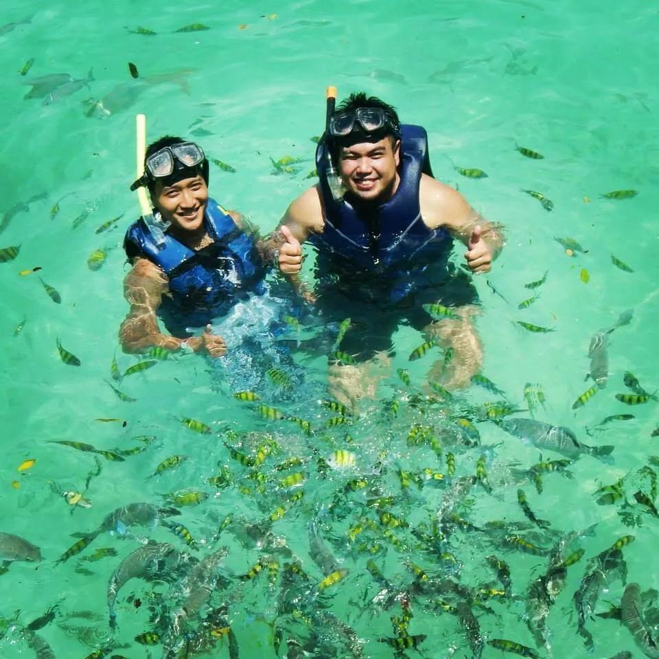 Pulau Payar Snorkeling Langkawi Fish