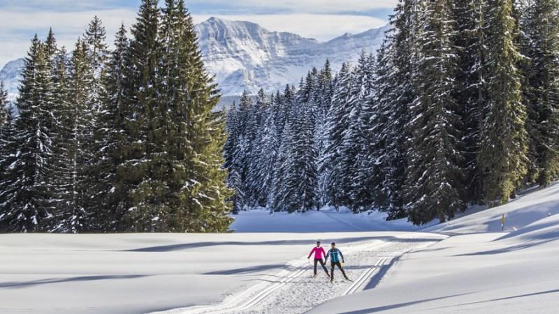 Chiemgau - wo der Langlauf-Sport zu Hause ist - langlaufen, langlauf-regionen, allgemein