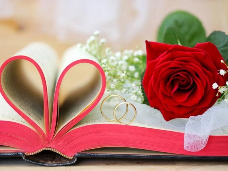 giornata del libro e della rosa