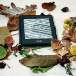 Ultimi libri usciti: 10 novità letterarie in libreria a novembre 2017