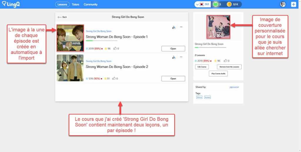Comment importer des contenus de Viki dans LingQ : aperçu de votre nouveau cours personnalisé
