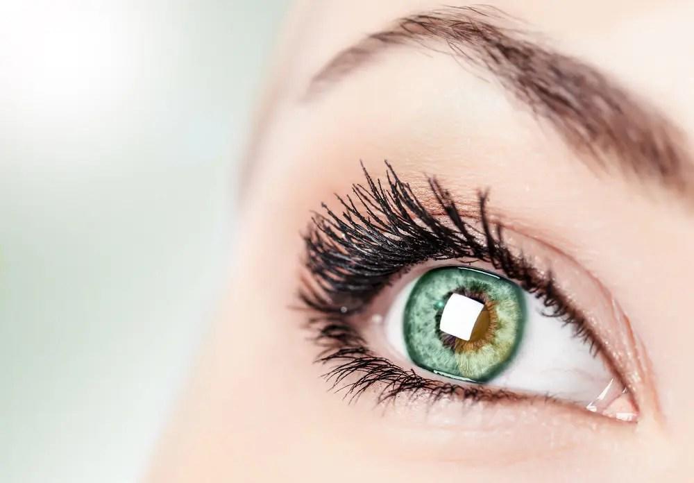 Vision, eyes