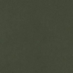 00501-6