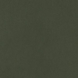 Tessuto Abito Verde Essenza Cotone