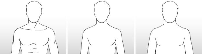 Profil du buste