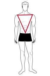Immagine forma del corpo del triangolo invertito uomo