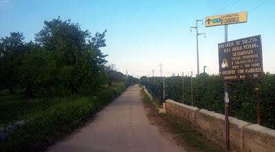 enel strada ex sp 83