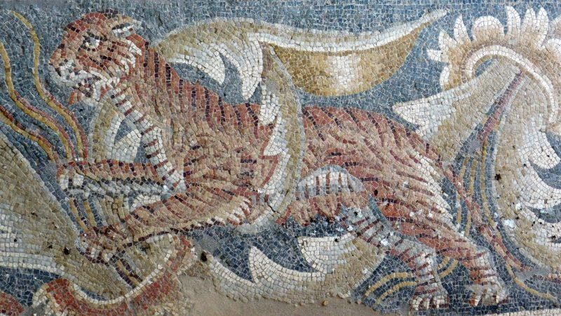 I mosaici della villa romana del Tellaro