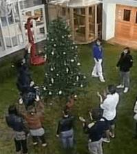 albero casa gf