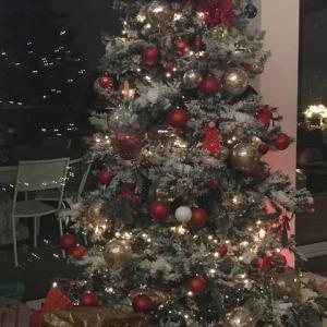 foto Antonella Clerici albero di Natale