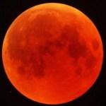 Paolo Fox svela l'oroscopo della Super Luna a La vita in diretta