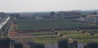 Uliveto-Agrario