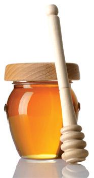 abeille-miel-4.jpg
