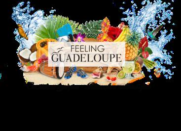 Feeling-Guadeloupe-logo