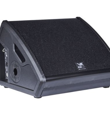 LVX XM 12 - Professional stage monitor