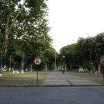 DIVERSAS ACTIVIDADES EN LA PLAZA EL SABADO, POR LOS 209 DE LA REVOLUCION DE MAYO