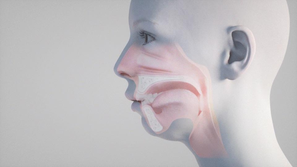 bcn faces diseño web hospital clinica maxilofacial diseñador diseñadora web freelance barcelona
