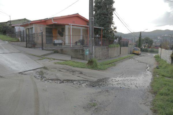 Calle Las Rosas 2