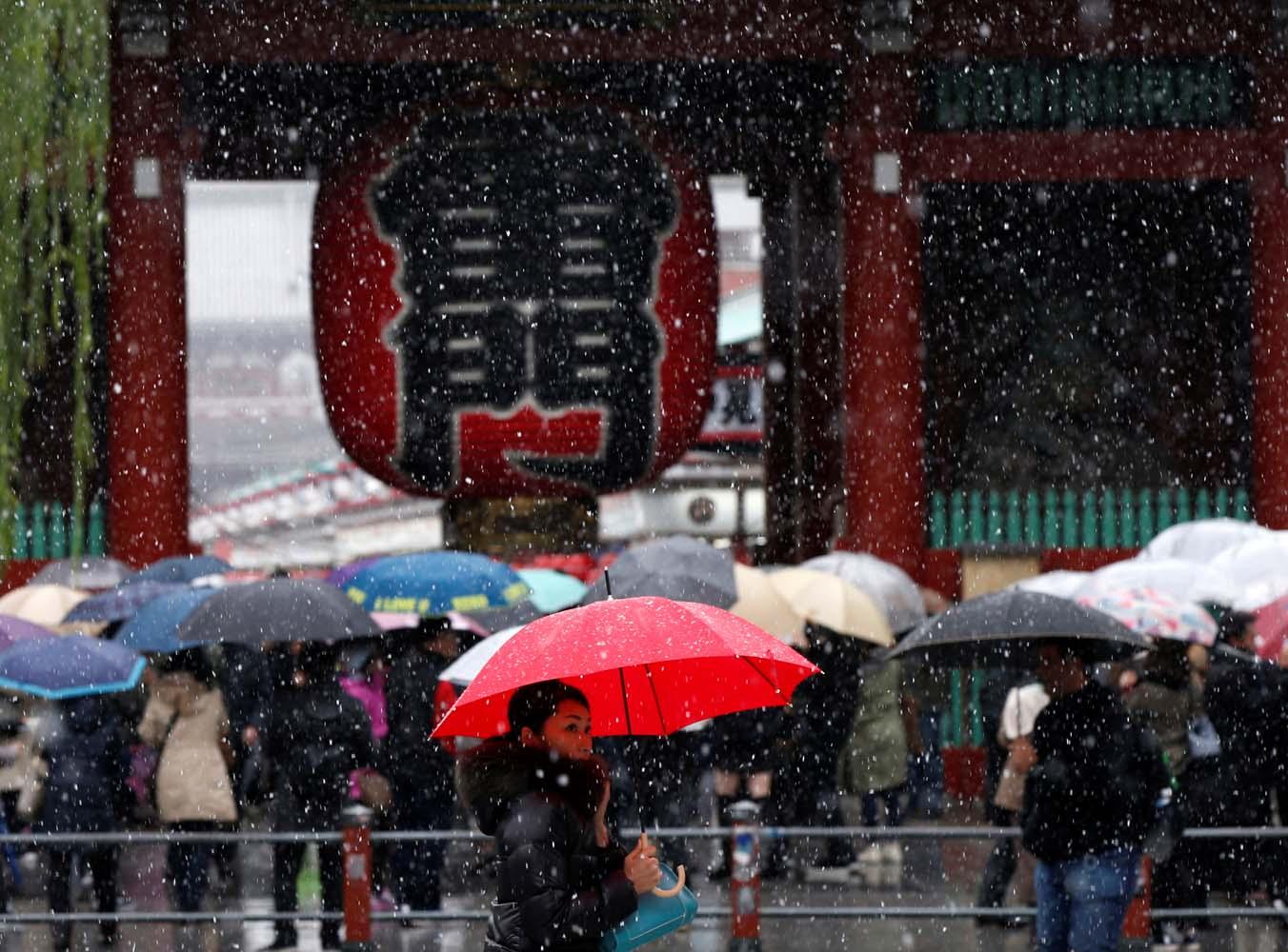2016-11-24T033952Z_1626068361_S1AEUOPKEAAA_RTRMADP_3_JAPAN-WEATHER