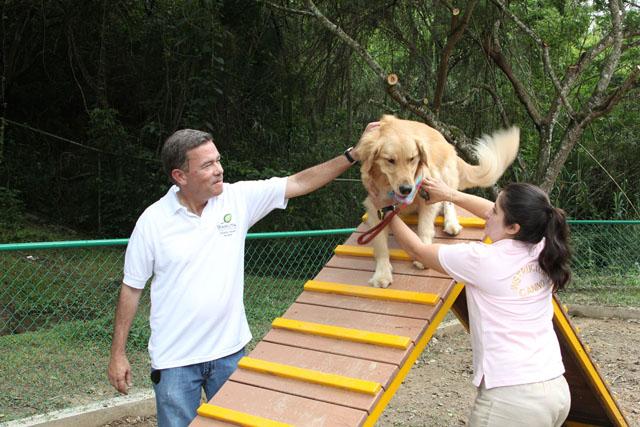 Parque perros (7)