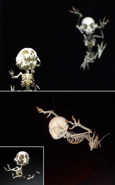 esqueletos-animados-5