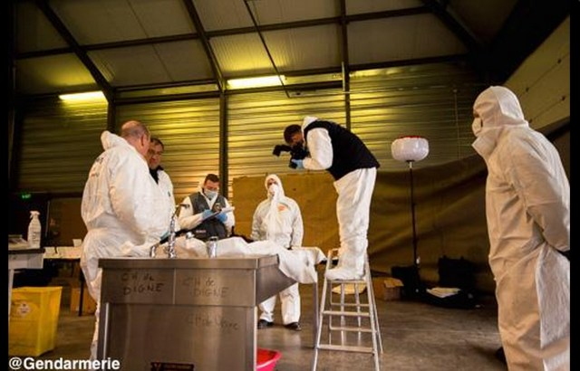 A handout photo released by the French Gendarmerie shows their forensic experts of the disaster victim identification unit at Seyne-les-Alpes