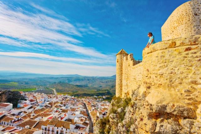 los_castillos_mas_bonitos_de_espana_65931649_650x