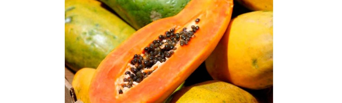EU lanza alerta por papaya mexicana contaminada con salmonela