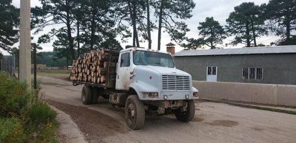 Asegura la CES en San Juanito cuatro tractocamiones; Dos cargados con madera