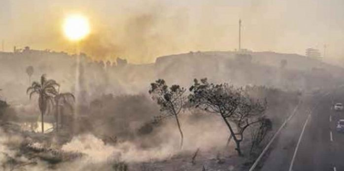 Mueren 4 en incendios de baja california