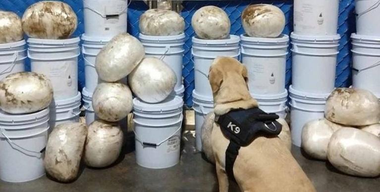 Aseguró Guardia Nacional 144 kilos de metanfetamina en Culiacán