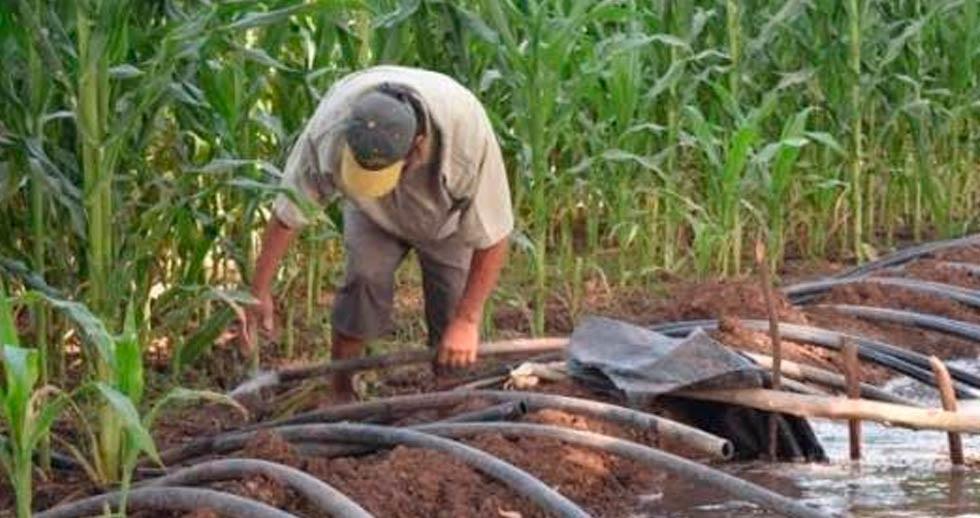 Garantizan agua para productores a pesar del Tratado Binacional