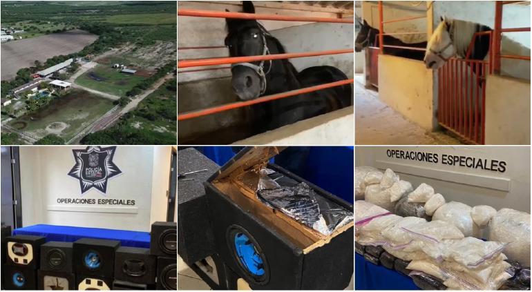 Aseguran en Tamaulipas 200 kg de cristal y rancho con caballos finos
